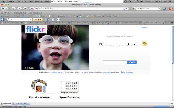 Flickr is easily the largest photo-sharing community and is aimed at photographers.